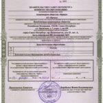 Приложение №2 к лицензии на осуществление образовательной деятельности
